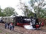 Eisenbahnfreunde Wetterau (105).jpg