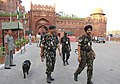 Elaborate security arrangements made for the Independence Day celebrations. Picture shows sniffer dogs checking the premises where rehearsals are on, at historic Red Fort, in Delhi on August 13, 2006.jpg