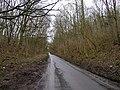 Elloughton Dale - geograph.org.uk - 126591.jpg