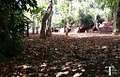 En el parque de las brujas - panoramio.jpg