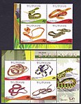 Endemic Snakes of the Philippines 2017c.jpg