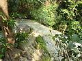 Erawan Waterfall Level 7 P1110177.JPG
