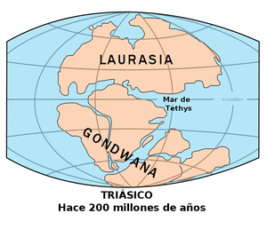Paleocontinent - Gondwana: Triassic Period, 200 mya