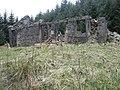 Euchanhead Ruin - geograph.org.uk - 393924.jpg