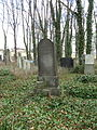 Evangelický hřbitov ve Strašnicích 100.jpg