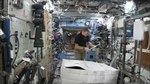 File:Expedition 46 Tim Peake chased through ISS by a gorilla.webm