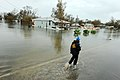 FEMA - 38440 - Indiana TF-1 US&R team member wades thorough a flooded street in Texas.jpg