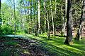 FFH DE 2949-302 Grumsiner Forst Redernswalde-07.06.2014-5.JPG
