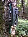 FLT M22 4.7 mi - Register near Lincklaen Rd - panoramio.jpg