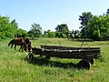Farm Scene with Horses and Wagon - Outside Church of the Holy Trinity - Near Brest - Belarus (27360220102).jpg