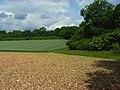 Farmland, Ramsbury - geograph.org.uk - 857336.jpg