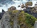 Farol da Ponta do Arnel EP1040468 (44804010361).jpg