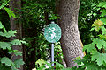 Feldbach - GLt 60 - Sparkassenpark.jpg