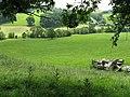 Fields before Lower Weston - geograph.org.uk - 867851.jpg