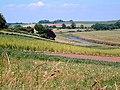 Fields of Clyst Valley, Topsham - geograph.org.uk - 473493.jpg