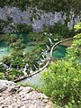 Fifty shades of green - Spring at Plitvice laked 01.jpg