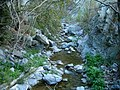 Fish Canyon in Angeles National Forest in the San Gabriel Mountains of Los Angeles County (33896579404).jpg