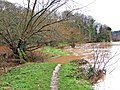 Flooded footpath by River Severn near Blackstone Rock - geograph.org.uk - 659157.jpg