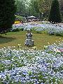Flower-center134534.jpg