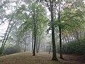 Foggy morning (7991063888).jpg