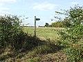 Footpath - geograph.org.uk - 1546895.jpg