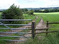 Footpath Near Consall - geograph.org.uk - 487962.jpg