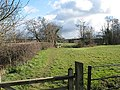 Footpath crosses Kempley Brook - geograph.org.uk - 732366.jpg