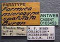 Formica spatulata casent0103453 label 1.jpg