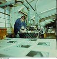 Fotothek df n-35 0000003 Facharbeiter für buchbinderische Verarbeitung.jpg
