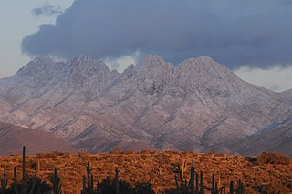 Four Peaks mountain in United States of America