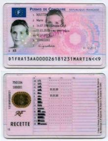 Cat Passport Cost France