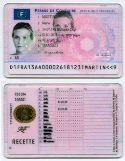 French driving license 2013