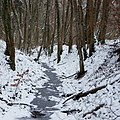 Frozen River (193532639).jpeg