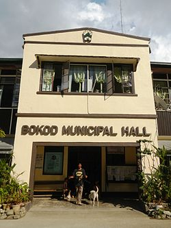 Bokod Municipal Hall