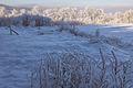 Góry Izerskie, Czerniawa Zdrój - panoramio (1).jpg