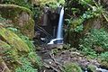 Görwihl Großer Höllbachwasserfall Bild 3.jpg