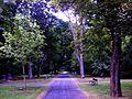Göttingen Stadtfriedhof Weg.jpg