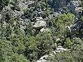 Göynük Kanyon - panoramio (11).jpg