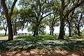 Garden view - Bok Tower Gardens - DSC02307.jpg