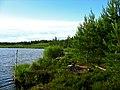 Garkalnes novads, Latvia - panoramio - SkyDreamerDB (9).jpg