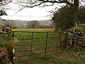 Gate and field near Narramore Farm - geograph.org.uk - 1228464.jpg