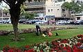 Gatos en Lima - panoramio.jpg