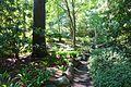 General view - VanDusen Botanical Garden - Vancouver, BC - DSC07249.jpg
