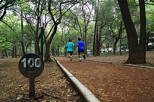 Chapultepec - Many people use Chapultepec every day to run and exercise like in the Gandhi Circuit in the First Section of the park.