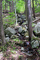 Gfp-new-york-adirondack-mountains-path.jpg