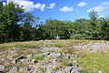 Gfp-new-york-wellesley-island-state-park-little-statue-at-the-top-of-the-hill.jpg