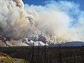Gila National Forest (7282042716).jpg