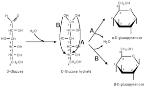 Glucose cyclisation.png