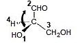 Glyceraldehyde rotated.jpg