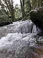 Godawari botanical garden 20180912 125804.jpg